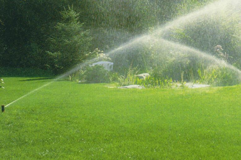 Watering/Irrigation