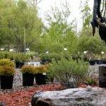 Turf Tech Walker Minnesota Garden Center Image