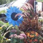 Walker-Minnesota-Floral-Arrangements_0010_Layer 1