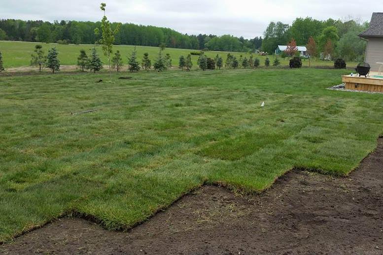 Walker-Minnesota-Turf-Tech-Landscape-Sodding-Services